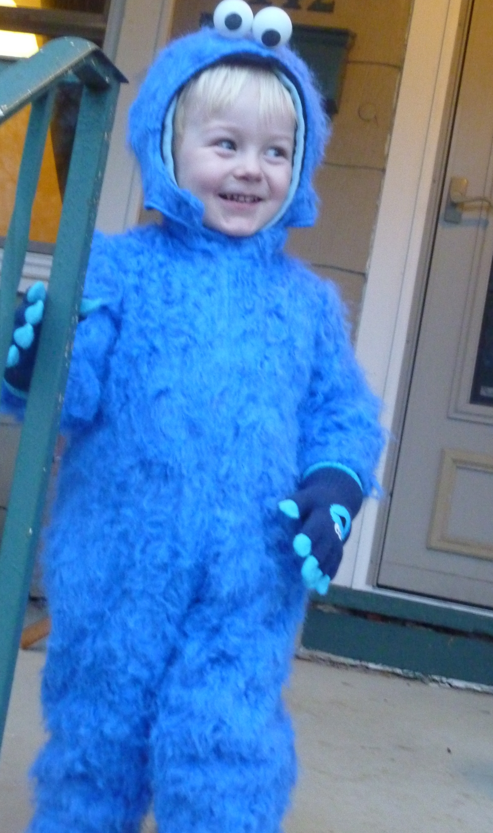 301 Moved Permanently Homemade Cookie Monster Halloween Costume